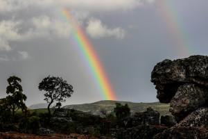 rainbow-509500_1920